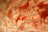 Rock paintings - West Coast - South Africa