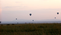Balloons over the Masaï Mara (wildebeests migration)