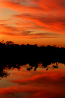 Sunset - Madikwe